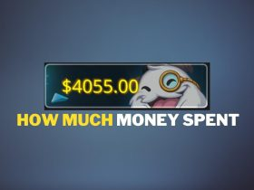 How much money I have spent on League of Legends
