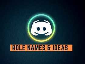 Best Discord Role Names and Ideas